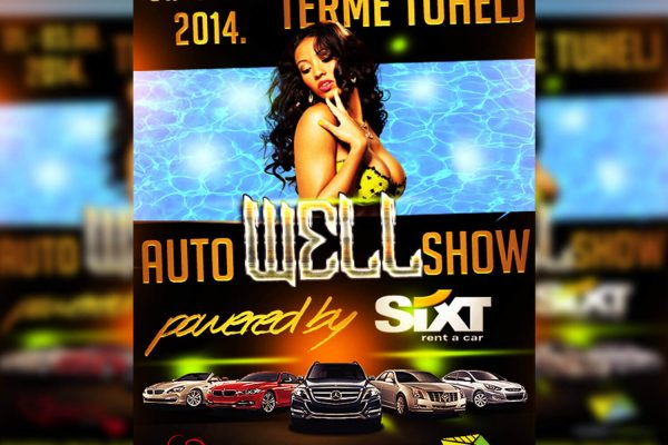 Flyer well auto show